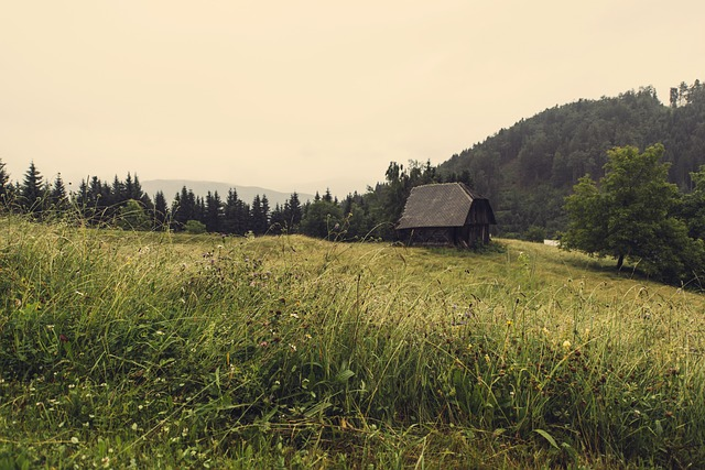 The Benefits of Off Grid Living